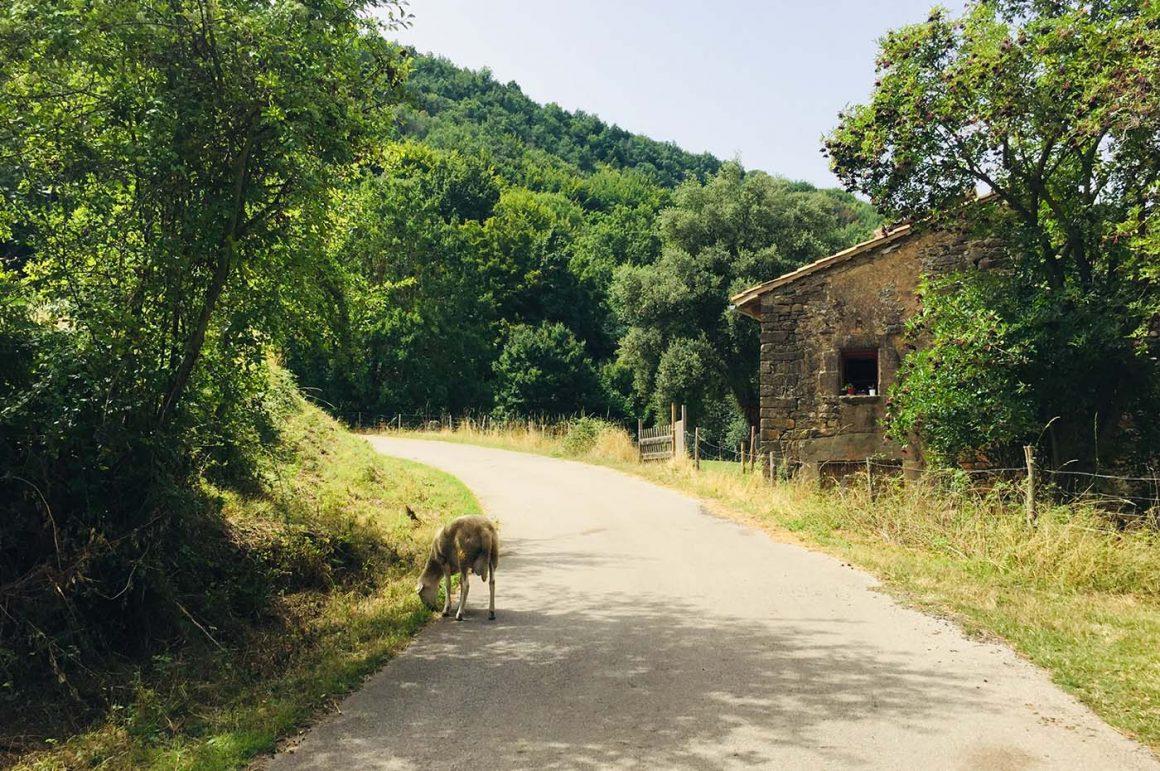 Base Layer Challenge Girona